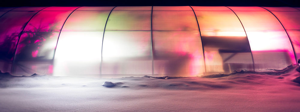 The Native Exotics Greenhouse at Night with Snow on the ground